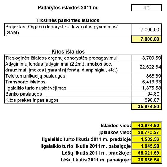Išlaidos 2011