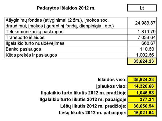Padarytos išlaidos 2012 m.
