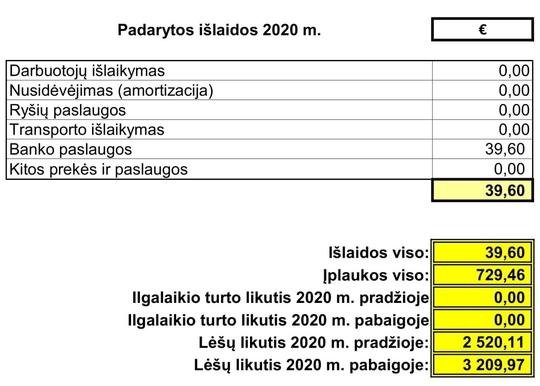 Padarytos išlaidos 2020 m.