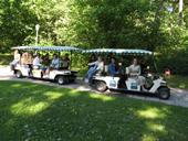 Ekskursija po Palangą elektromobiliu